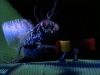 beetlejuice-042