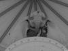 Dumbo_MPC_ITW_12B
