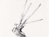 edward-scissorhands-croquis-021