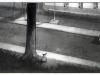 frankenweenie-croquis-008