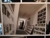 frankenweenie-exposition-014