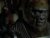 planet-of-the-apes-159
