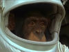 planet-of-the-apes-204
